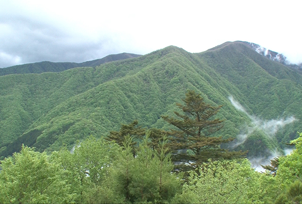 三峰山雲海
