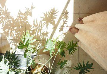 絶対的な信頼で我が家の植物をお任せしているグリーンコーディネーター『PUPUA INTERNATIONAL』