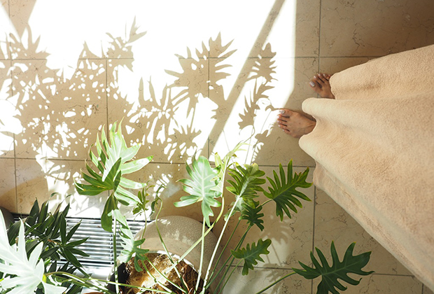 窓からの光でグリーンの影ができて、お部屋の景色を変えてくれます