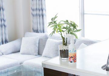 安心して家中で使える除菌&消臭スプレー