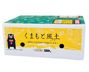 熊本小玉完熟みかん/くまもと風土