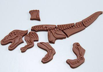 恐竜パズルチョコレート/マキィズ