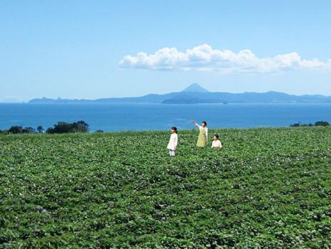 鹿児島県大隅半島(日本本土の最南端)にある直営農場