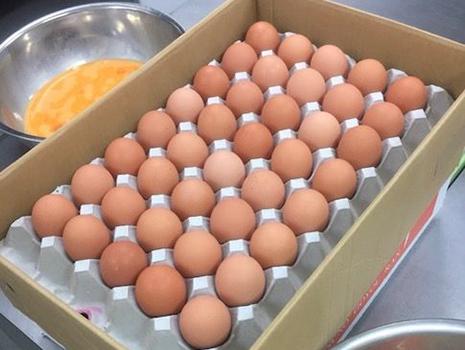大寒日に生まれた卵は大変縁起がいいと重宝されてきた