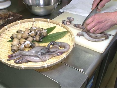 ゲンゲは幻魚とも書き、それこそ幻の深海魚として金沢の居酒屋等で珍重され何度か食した。