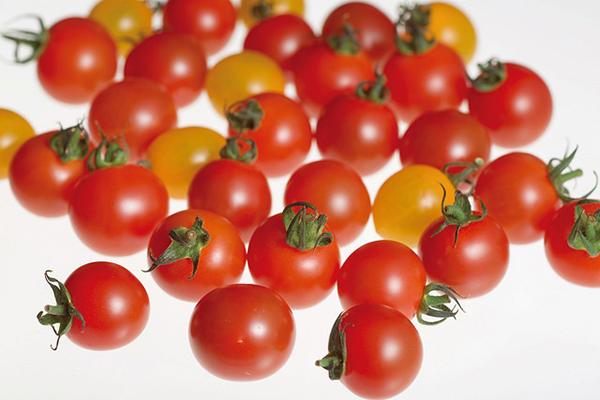 有機培土を使った驚きの甘さ! トマトが苦手な人にも好評の『オスミックトマト』