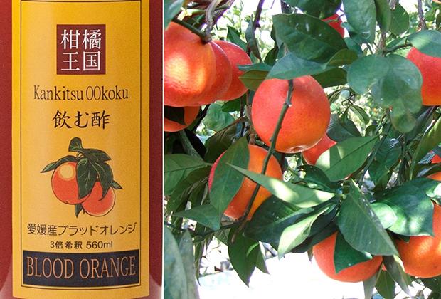 温州みかんの産地で知られる宇和島の新たな名物・ブラッドオレンジ