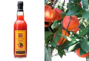 濃厚な果汁と香りが魅惑的! 愛媛産ブラッドオレンジの『飲む酢』