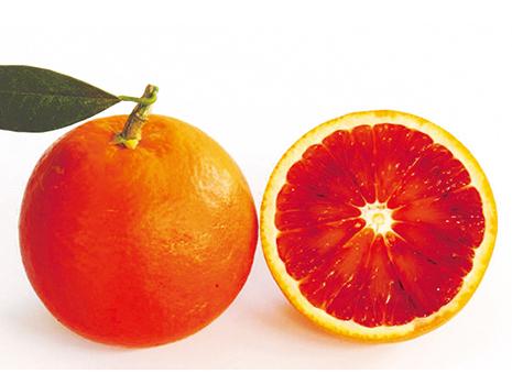 インパクトのある真っ赤な果皮と果肉