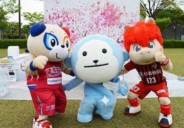 熊本地震復興祈願 めざましLIVE COUNTRY TOUR 2018 in YATSUSHIRO「くまもと桜まつり」レポート!