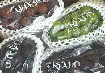 自然派の葡萄 ミックス(中箱) / 錦農園フルーツストア