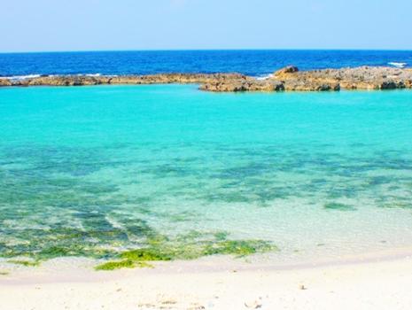 鹿児島県奄美諸島に属する喜界島は、サンゴ礁が広がる海に囲まれた美しい島